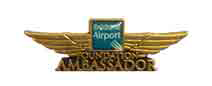 Brisbane Airport Lapel Pin