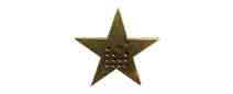 David Jones Star Lapel Pin