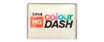 Ms Colour Dash Lapel Pin