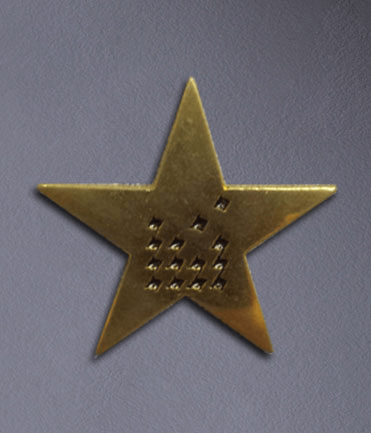 Lapel Pin Detail